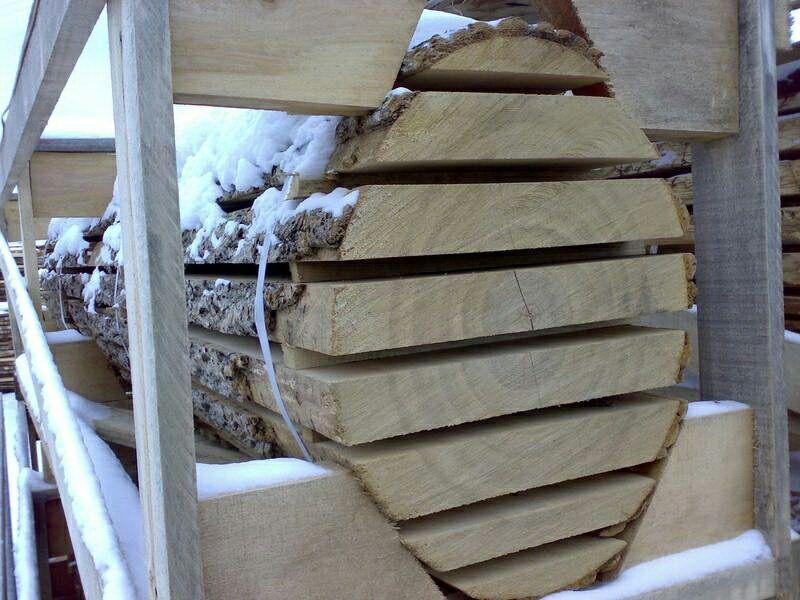pjautine mediena